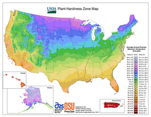 USDA Hardiness Zones: What Does Your Zone Mean?